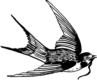 the paserene swallow logo signifying one of the Best wine farms in Franschhoek